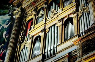 Organo Del Duomo